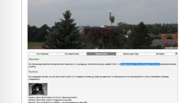 Webcam Storchennest Ludwigsburg