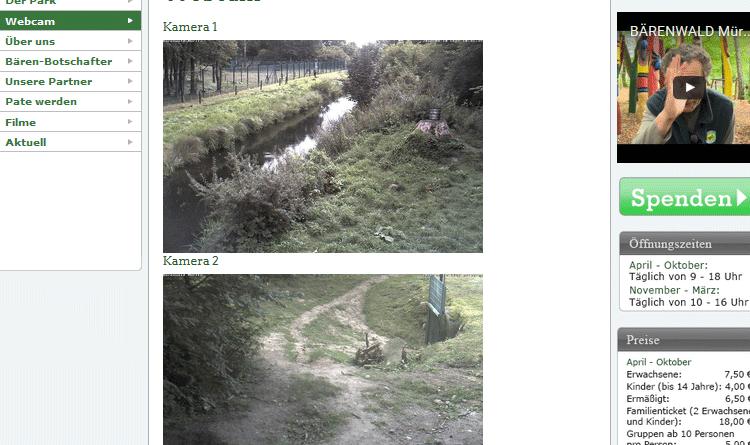 Webcams Bärenwald Müritz
